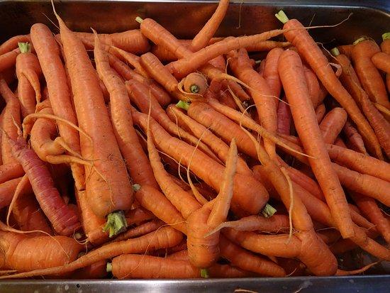 Greenville, ME: BHI garden harvest