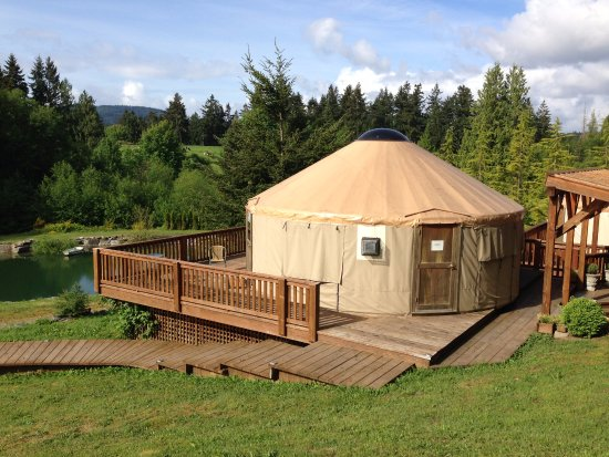 Cobble Hill, Canada: Our yurts overlook a deep pond and rock gardens