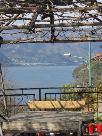 Pognana Lario, İtalya: vista dal giardino
