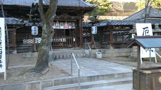 Suwa Shrine: DSC_0361_large.jpg