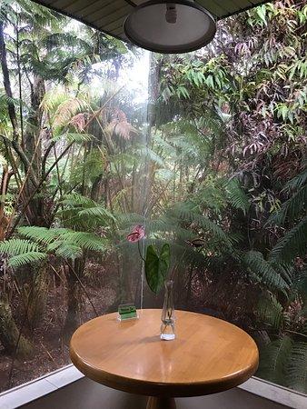 Zdjęcie Volcano Inn