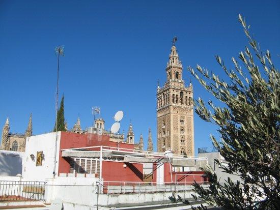 Hotel Alcazar Seville Tripadvisor