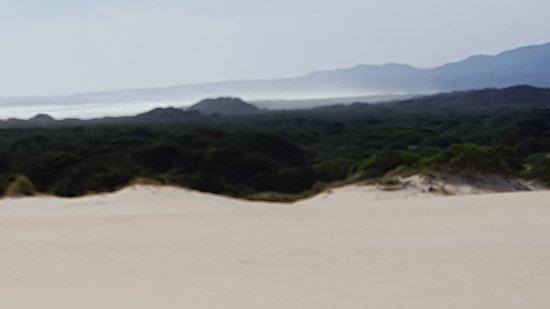 Henty Dunes: 20170314_162930_large.jpg