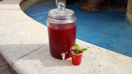 South Miami, FL: Blueberry Mojito