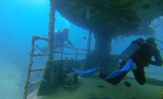 Bayahibe, Dominik Cumhuriyeti: Dive #1