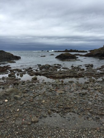 BEST WESTERN Vista Manor Lodge: Glass beach is close by and it's beautiful.