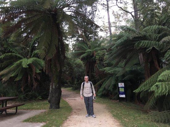 Burnie, Australien: photo0.jpg
