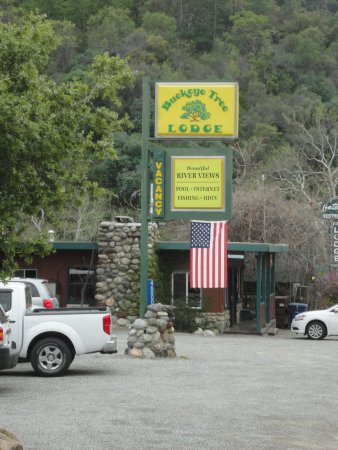 Three Rivers, CA: The Buckeye Tree Lodge sign, Great Location