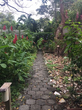 Hotel Chillies: The path to our little cabin.