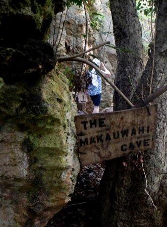 Koloa, Hawaï: An Important Find