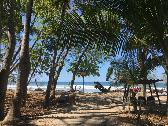 Amazing experience at Canaima chill house! Beautiful beach