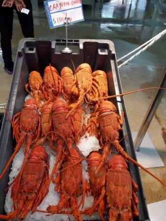 Auckland, Selandia Baru: Cooked Crayfish