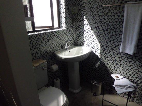 Antrim Villa: シャワーも付いています
