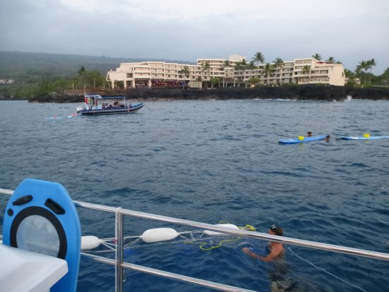 Keauhou, HI: Close to shore; you hold onto the bars around the white floaters