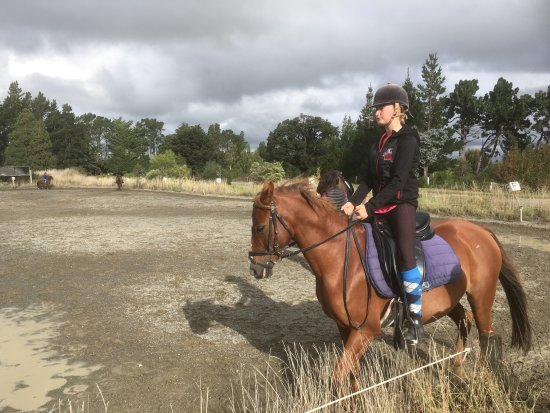 Oxford, Nueva Zelanda: Flatwork lesson
