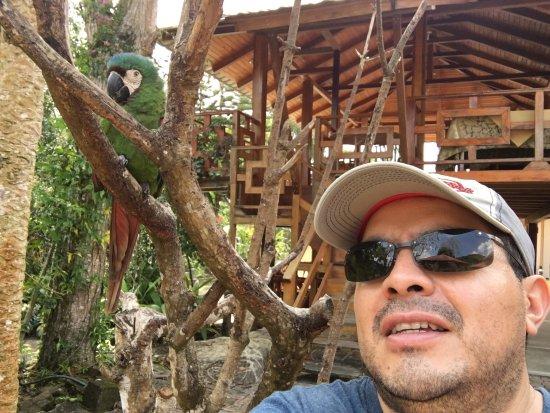 Zamora, Ecuador: photo4.jpg