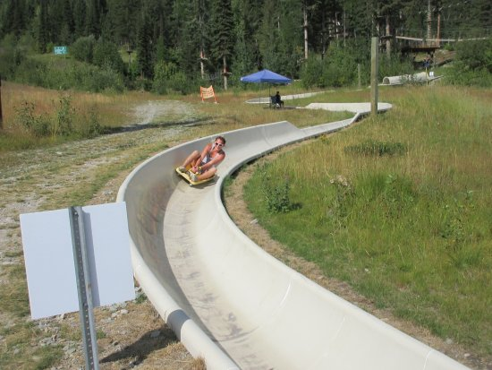 Whitefish, Монтана: Alpine Slide- see how fast you can go!