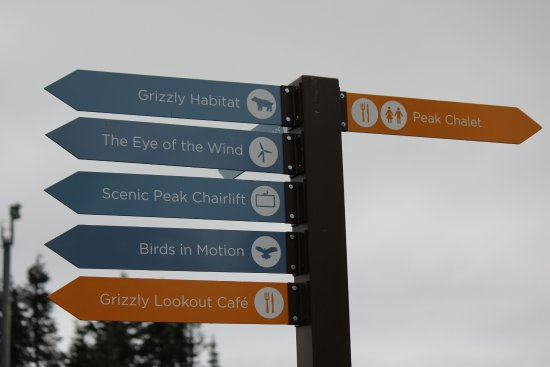 Grouse Mountain Activities sign