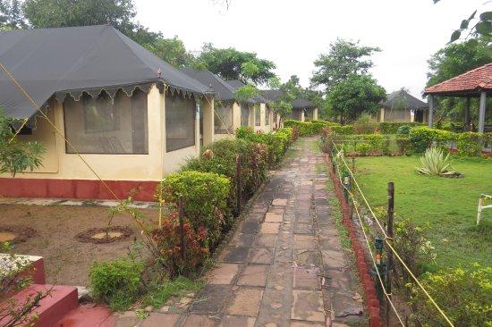 StayApart - Camp Serai Tiger
