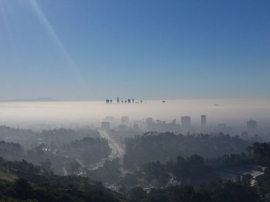 Beverly Hills, Californie : 20170313_091352_large.jpg