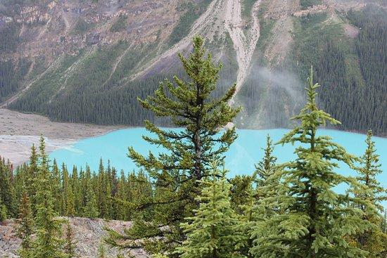 Banff Ulusal Parkı, Kanada: Glarier Blue waters of Bow Summit