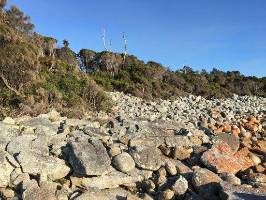 Bicheno, Australia: photo2.jpg