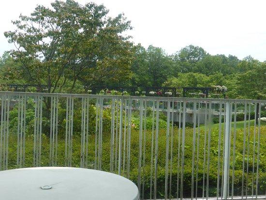 Nanbu-cho, Japan: 眺望は園内、ひょっとしたら外でも食事出来るかも