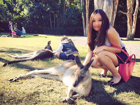 Currumbin, Australia: 袋鼠非常友善