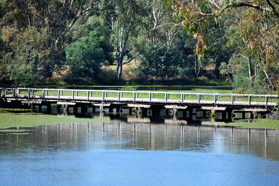 Tabilk, Australia: Tahbilk Winery Billabong