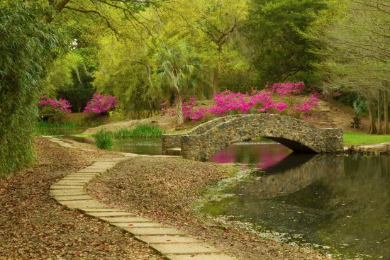 Avery Island, LA: Bridge near the Buddha Temple
