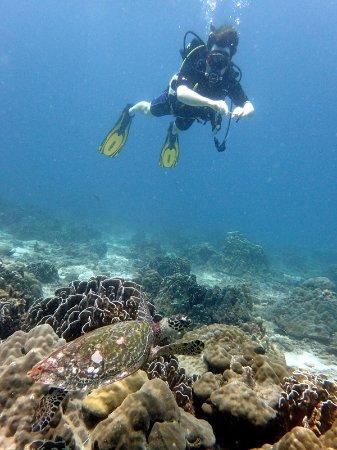 Super Divers: Picture of myslef taken by Philippe Walmach in Thailand