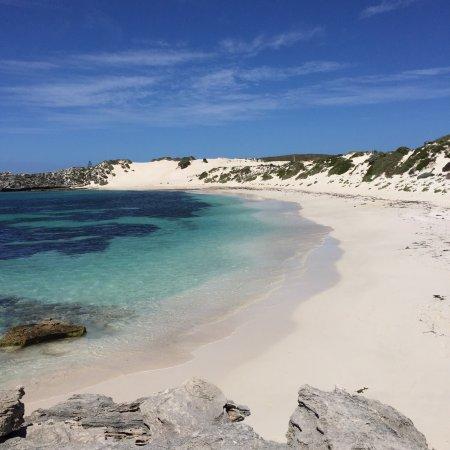 Rottnest Island, Australien: photo0.jpg