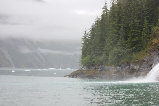 Tracy Arm Fjord: Tracy Arm