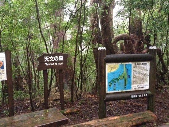 Mt. Tachudake Foto