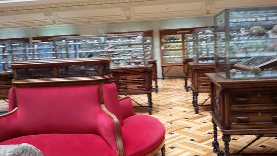 Museo Geominero: Sala principal
