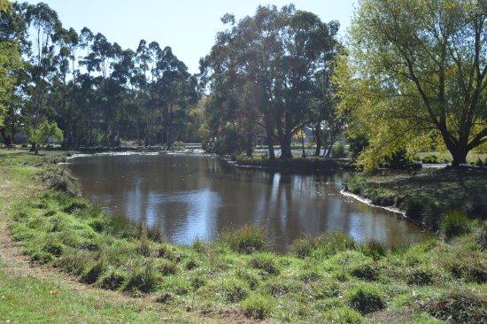 Trentham, Australia: Lake
