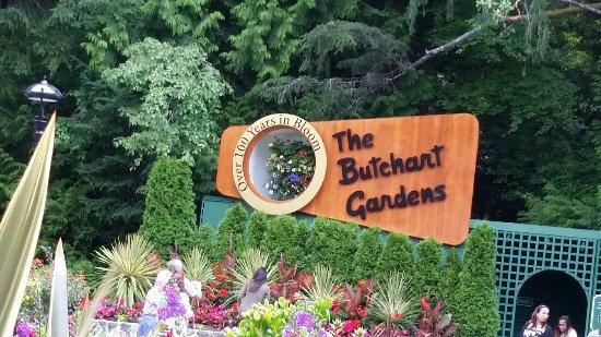 Butchart Gardens: untitled1_large.jpg