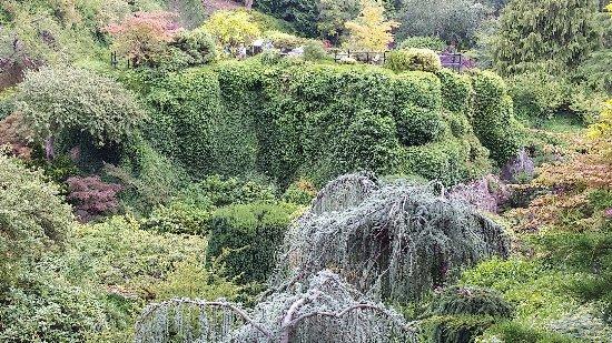 Butchart Gardens: untitle3d_large.jpg