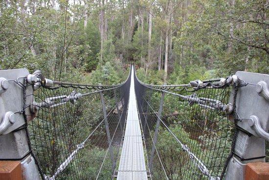 Geeveston, Australia: Swing bridge