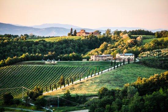 Montaione, อิตาลี: Colle Bertini