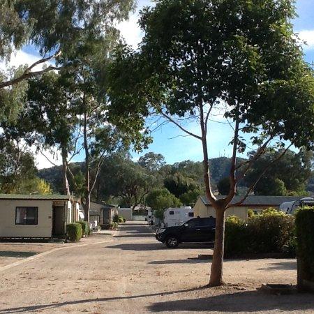 แอลบิวรี, ออสเตรเลีย: Looking down main driveway