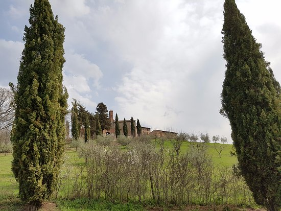 Chiusdino, İtalya: Dintorni