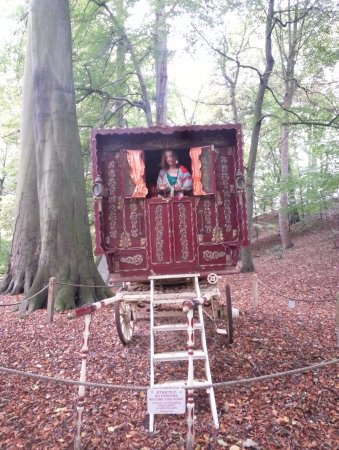 Mother Shipton's Cave and The Petrifying Well: Quirky stuffs!