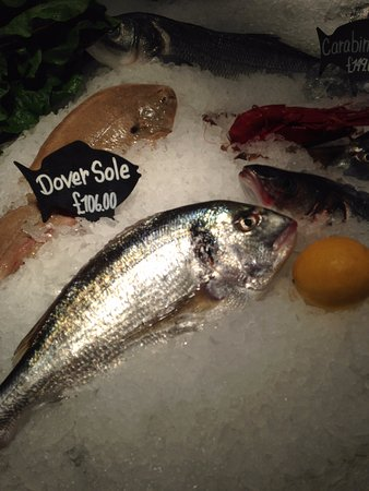 Greater London, UK: ממנחר הדגים