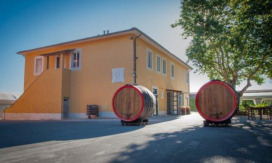 Crespina, Italy: Osteria Agricola Toscana Pitti&Friends