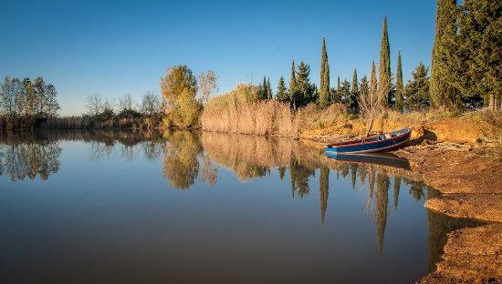 Crespina, Italy: Uno dei laghi della Tenuta