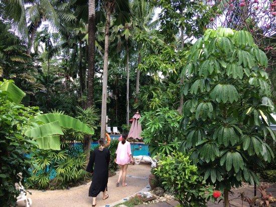 The Viridian Resort: photo3.jpg