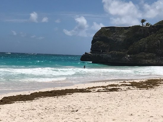 Costa Atlántica, Barbados: photo0.jpg