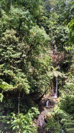 Costa Rica Jade Tours: Rainmaker Park waterfall