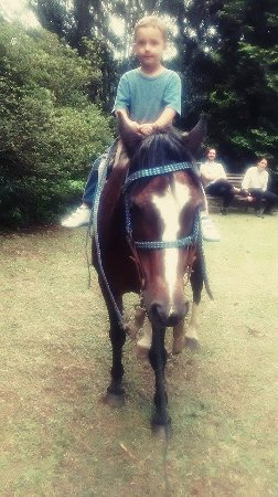 Passeio a cavalo para crianças